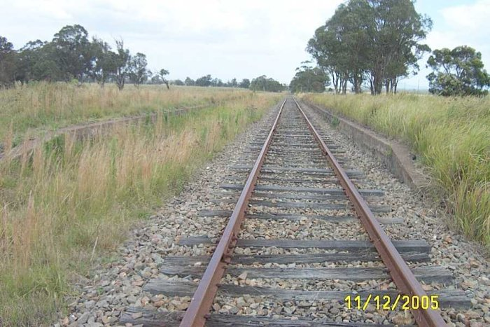 The two platforms looking towards Kurri Kurri. The Stanford Merthyr Branch is hidden on the left.