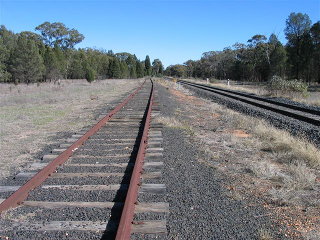 The dead end siding at Ballimore looking towards Dubbo, with the main line on the right.