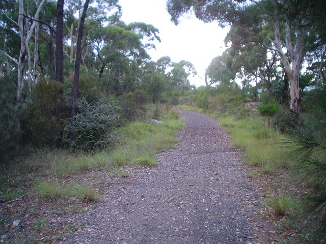 The view looking back along the formation towards the Berrima Junction.
