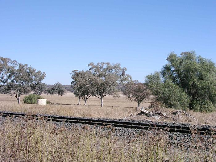 The view looking north towards the probable remains of the station.
