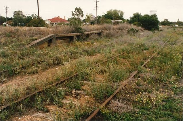The remains of the passenger platform, looking north.