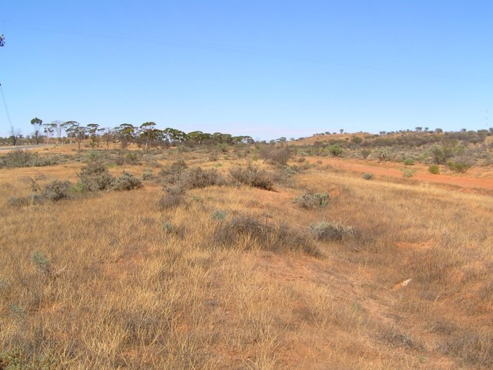 The location of the junciton between the Tarrawingee line and the short branch to the Broken Hill Racecourse.