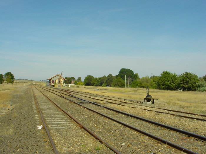 The view looking south towards the goods yard and shed.
