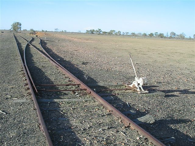 The up end of the siding, looking in the direction of Brewarrina.