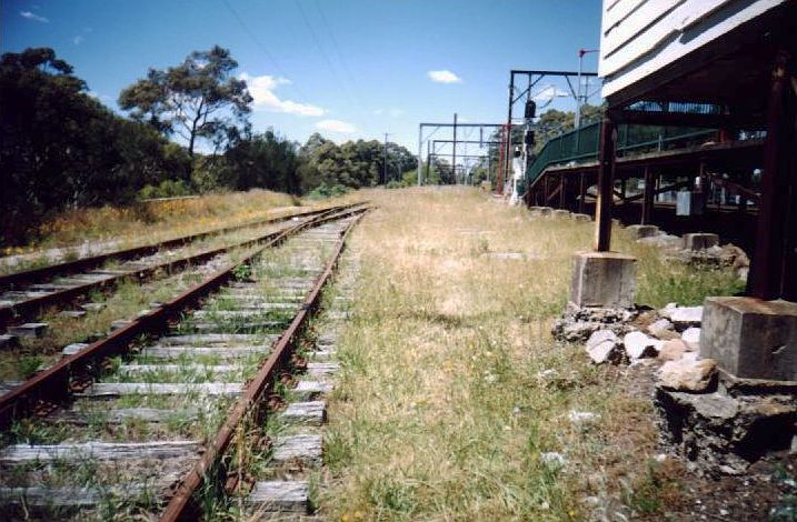 The view looking south showing the overgrown per-way sidings behind the up platform.