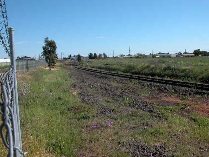 The site of the original junction between the Main Western Line and the Dubbo-Molong branch line. No trace remains of the branch line at the junction.