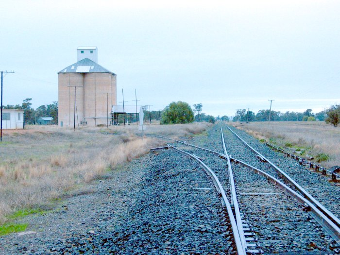 The view looking north.  The remains of the station are visible on the right of the line in the distance.  The loading bank is just before the large tree on the left.