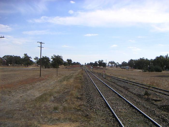 The down end of the yard, looking towards Narrandera.