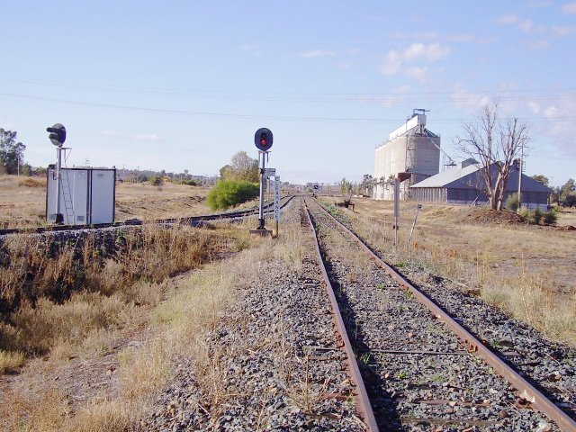 The junction of the Griffith and Hay lines at Yanco viewed from the Hay branch.