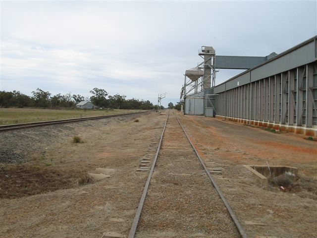 The view looking down the wheat siding towards Walgett.