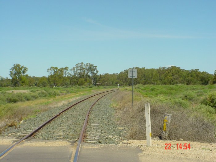 A view of the track heading west beyond Moulamein.