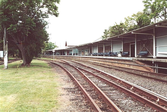 The long curved platform at Murwillumbah, looking in the up direction. The track through the trees on the left leads to the turntable.