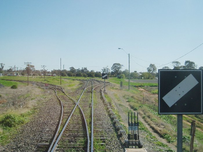 A view of Narrabri Junction North Fork, looking towards Narrabri West. The tracks on the left are for the Narrabri Junction Silo, the Main Line is straight ahead, and the line to Narrabri West Yard is on the right.