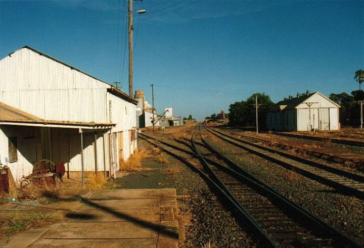 The view from the western end of the station, looking in the direction of Hay.  The lines branching to the left are the Mill Siding and overgrown No 1 Siding.  The Main and Loop lines extend into the distance, with the Back Road and perway shed on the right.