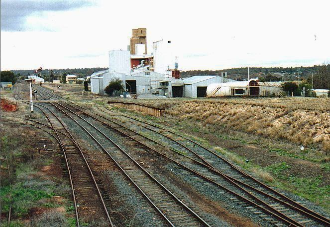 The view from the western end of the yard, looking back towards the station.  The disused line in the right foreground is the start of the disused branch to Jerilderie and Tocumwal.