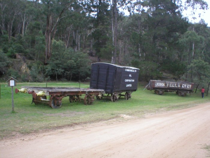 The representative collection of wagons near Newnes kiosk.