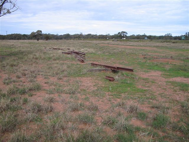 Some pieces of rail are all the remain of the track in the vicinity of the junction.  The Cobar branch runs along the levee bank in the right background.