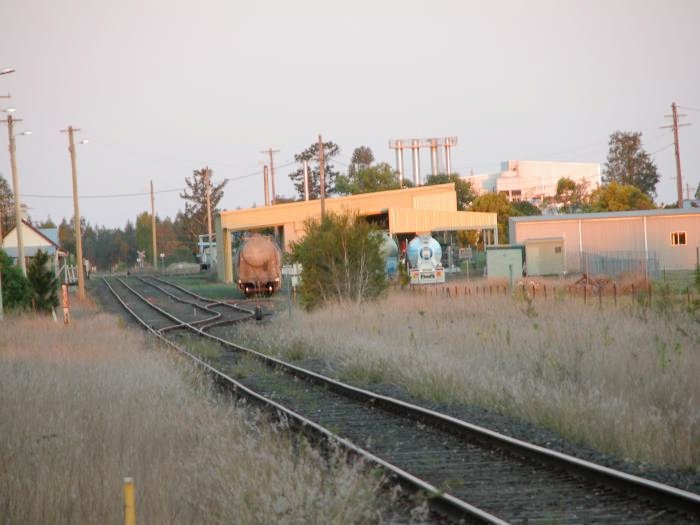 Cement wagons in the goods yard at Old casino station.