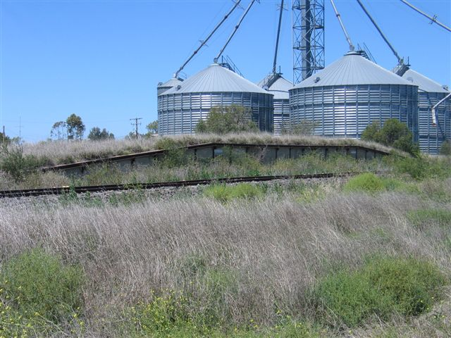 The overgrown goods bank, and silos.