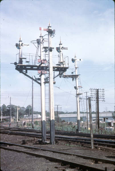 An assortment of signals, controlled by Taree South signal box.