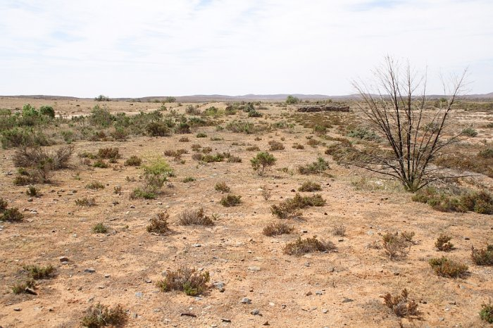The vicinity of the end of the line, looking back towards Broken Hill. The area is extensively flood damaged.