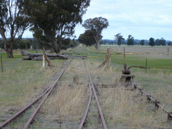 The points levers at the up end of the location, looking towards Henty.