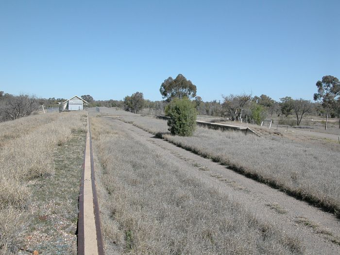 The view looking along the goods bank towards the remains of the station. The goods shed and the terminus are in the distance.