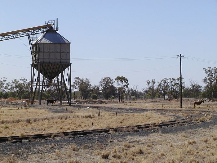 The triangular turning siding at Warren,  with a silo adjacent to the arm of the triangle furthest from the station.    It is unclear if this silo is in use.