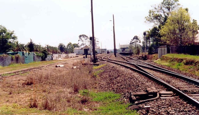 The view looking north from the Oxley Highway crossing. The stationis visible on the right in the distance. Just before it is the disused No 3 Timber Siding. On the far left is the goods siding, while in the centre are the transit (obscured) and loop sidings. In the distance are some wagons at the cement silo.