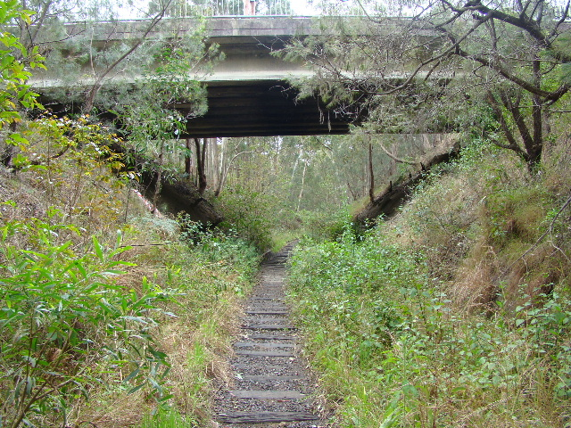 The view as the line passes under a road bridge, between Whitebridge and Redhead.